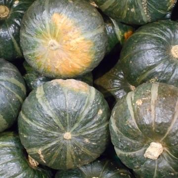ハロウィン限定のかぼちゃメニューは食べましたか??